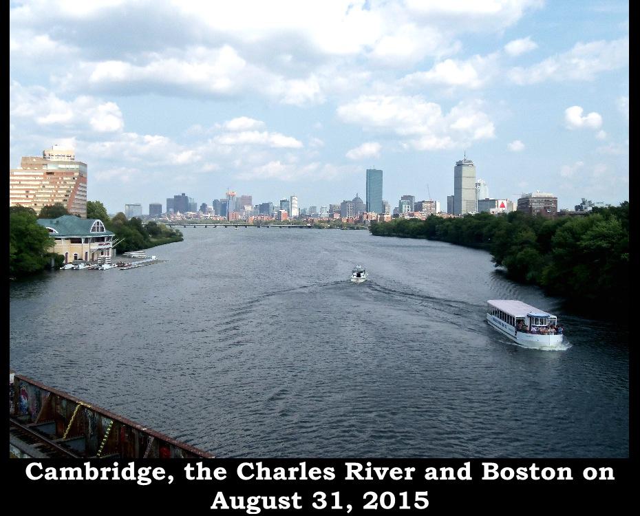 31.5.BostonBP